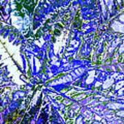 Line Texture Colour Art Print
