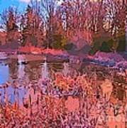 Linear Abstraction Of Pond Art Print