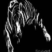 Lines Of The Tiger Art Print