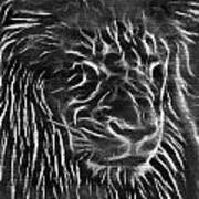 Lion - 2 Art Print