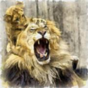 Lion 15 Art Print