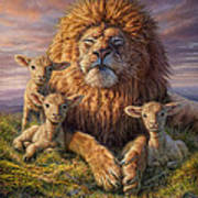 Lion And Lambs Art Print