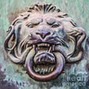 Lion And Snake Art Print