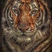 Lion Canvas Portrait Art Print