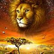 Lion Dawn Art Print by Adrian Chesterman