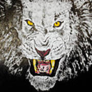 Lion In The Darkness Art Print