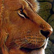 Lion King Art Print by Jurek Zamoyski