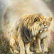 Lion Kiss Art Print