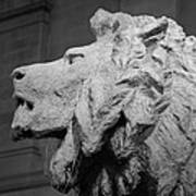 Lion Of The Art Institute Chicago B W Art Print