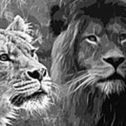 Lion Pair Black And White Art Print