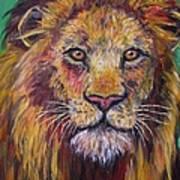 Lion Stare Art Print