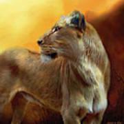 Lioness Is Near Art Print