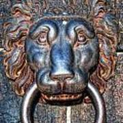 Lions Head Knocker Art Print