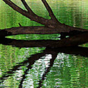 Liquid Reflection Art Print