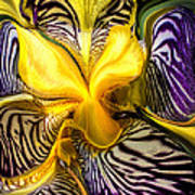Liquified Orchid Art Print