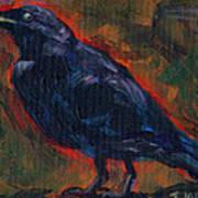 Lisa's Blackbird Art Print