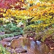 Lithia Park Ablaze With Fall Color Art Print