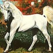 Little Arabian Art Print