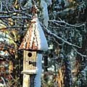 Little Birdhouse In The Woods Art Print