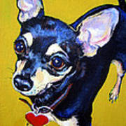Little Bitty Chihuahua Art Print