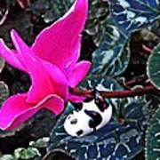 Little Glass Pandas 78 Art Print