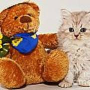little Kitten with her Teddybear Art Print