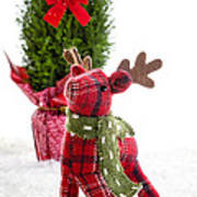 Little Reindeer Christmas Card Art Print
