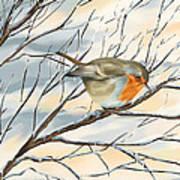 Little Robin Art Print