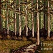 Little Stream In The Deep Woods II Art Print