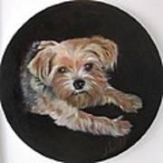 Little Susie Art Print