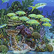 Lobster Feast Re0019 Art Print