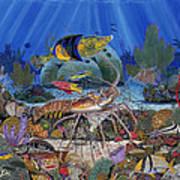 Lobster Sanctuary Re0016 Art Print