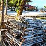 Lobster Traps Caye Caulker Belize Art Print