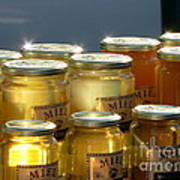 French Honey  Print by France  Art