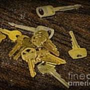 Locksmith - Rejected Keys Art Print