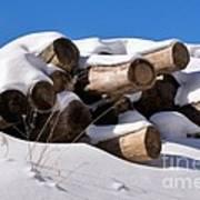 Log Pile In A Snow Drift In Winter Art Print