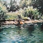 Logan River Art Print