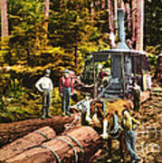 Logging With Steam Donkey Engine Near Olympia Washington Circa 1900 Art Print