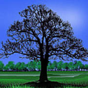 Lonely Old Tree Art Print