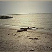 Lonely Seashore Art Print