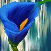 Lonesome And Blue- Blue Calla Lily Paintings Art Print