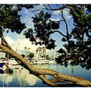 Long Beach Marina Art Print