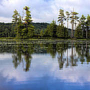 Long Lake Reflection Art Print