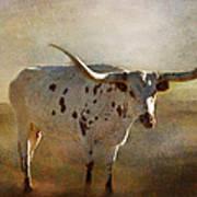 Longhorn  Art Print