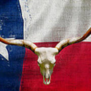 Longhorn Of Texas 2 Art Print