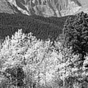 Longs Peak Autumn Scenic Bw View Art Print