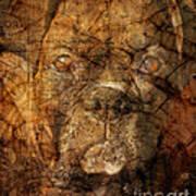Look Into My Eyes Art Print by Judy Wood
