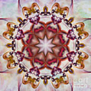 Look Into The Center Art Print