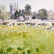 Looking Across Christ Church Meadows Art Print