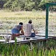 Looking At The Marsh Art Print